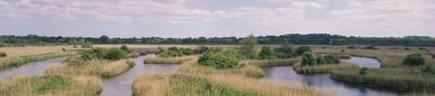 suffolk-broads